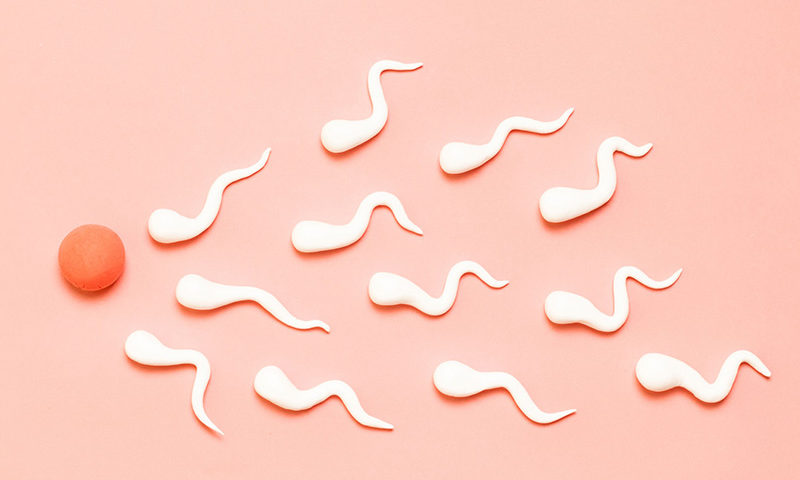 Surrogacy Story #1